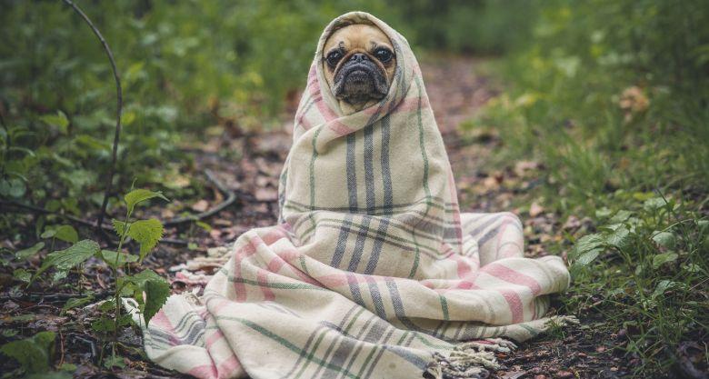 実家が寒い場合の対策を紹介!暖かくする方法