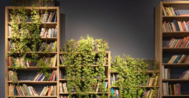 本せどりで使う本棚の効率的な入手方法